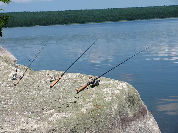 Fishing Poles Photograph - Waiting by Tammy Bullard