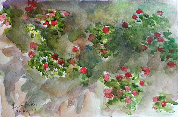 Flowers Painting - Wall Flowers by Janet Butler
