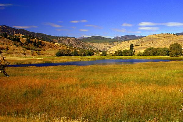 Landscape Photograph - Washington Landscape by Marty Koch