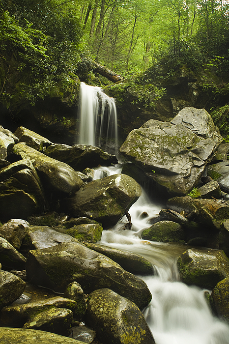 Grotto Falls Photograph - Waterfall In The Spring by Andrew Soundarajan
