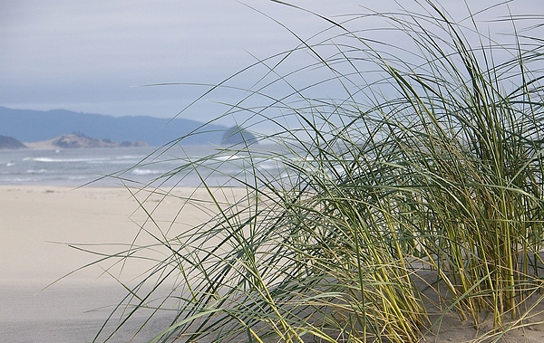 Beach Photograph - Weekend At The Beach by Angi Parks