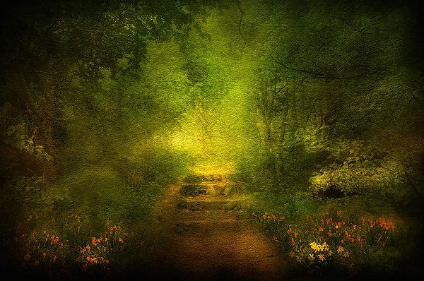 Branches Digital Art - Welcome Path by Svetlana Sewell