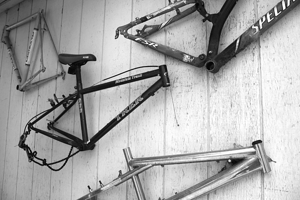 Urban Photograph - Well Worn Mountain Bike Frames  by Gray  Artus