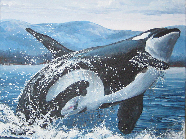 Whales Painting - Whale Watching by May Moore