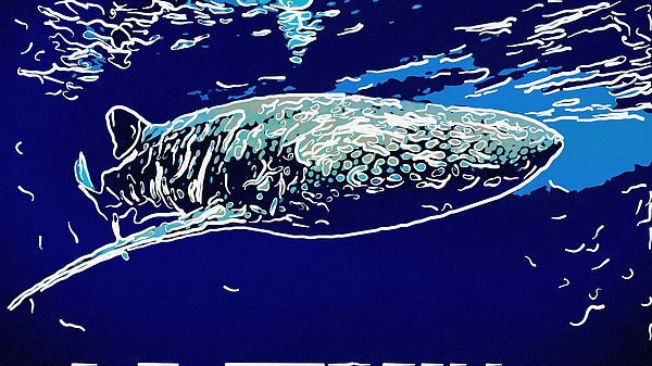 Whaleshark Painting - Whaleshark  by Lanjee Chee