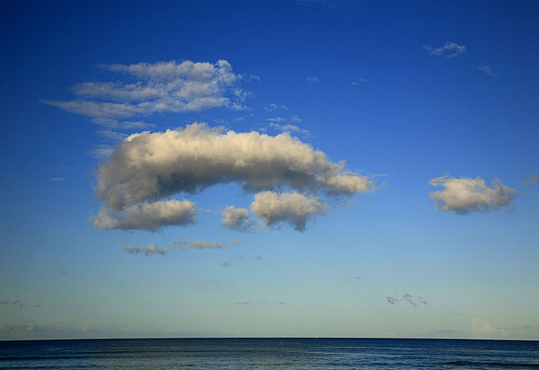 Seascape Photograph - What Do You See by David Watkins Jr