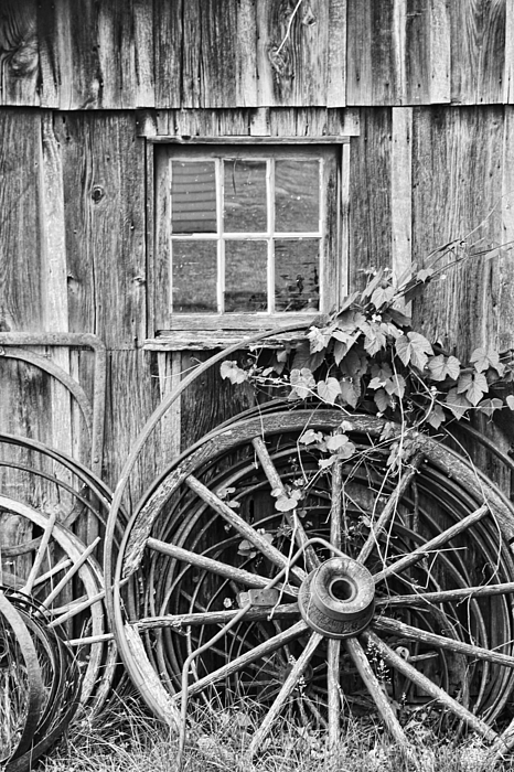 Wheels Photograph - Wheels Wheels And More Wheels by Crystal Nederman