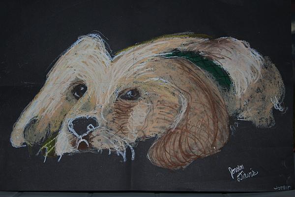 Dog Drawing - Whiskers by Jordan  Davis