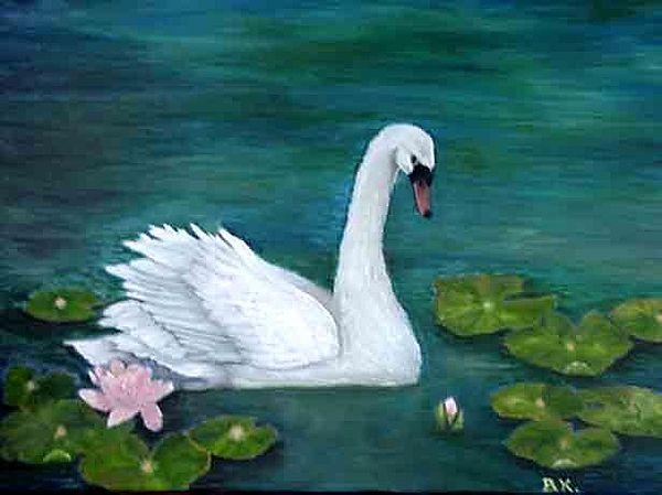 Birds Painting - Whisper - Mute Swan  by Barbara King