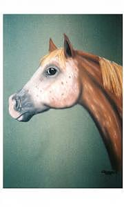 Horse Painting - Whisper by Diana Cochran