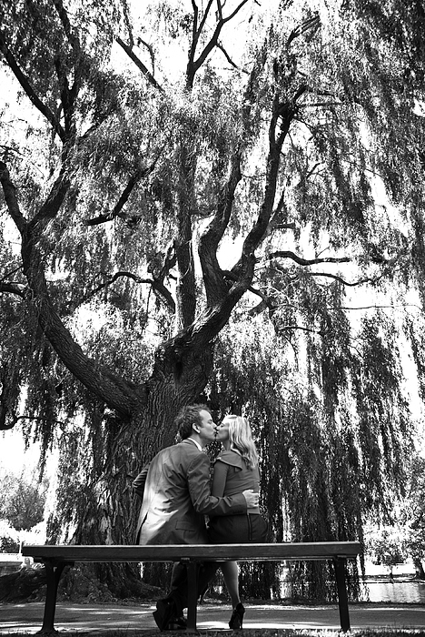 Wedding Photograph - Whisper Willow by Andrew Kubica