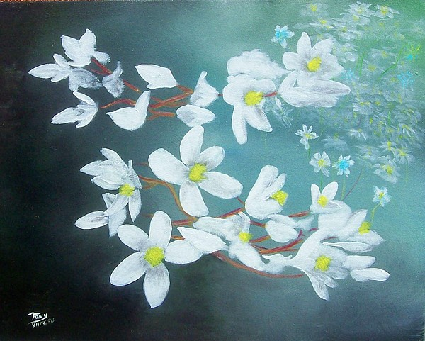Flowers Painting - White Flowers by Tony Rodriguez