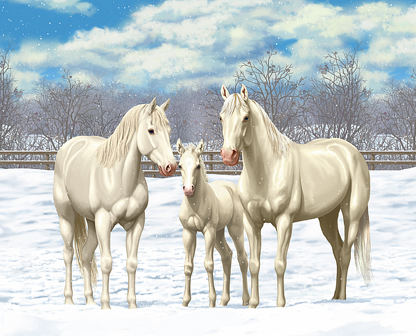 Horses Painting - White Horses In Winter Pasture by Crista Forest