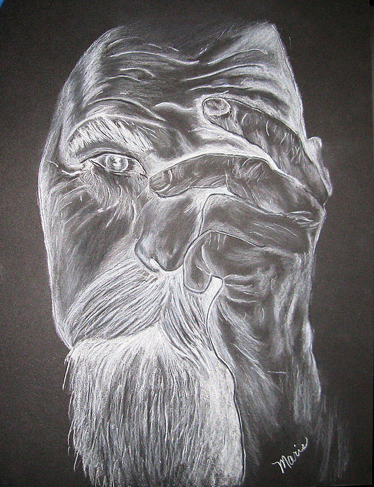 Man Drawing - White On Black by Maris Sherwood