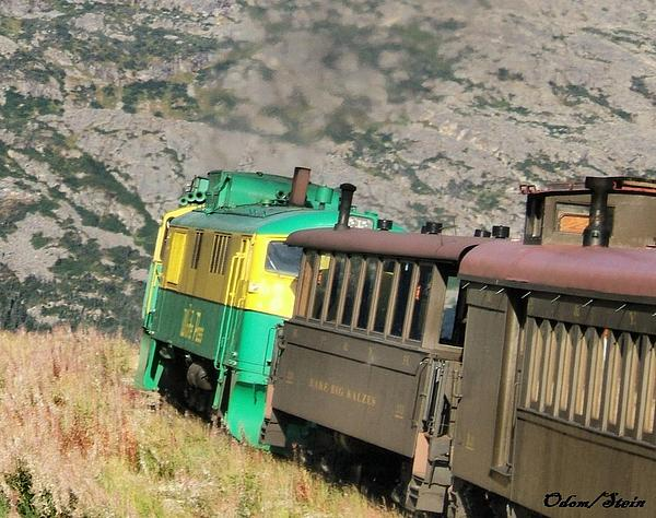 Yukon Photograph - White Pass Yukon Route Railroad by Dennis Stein