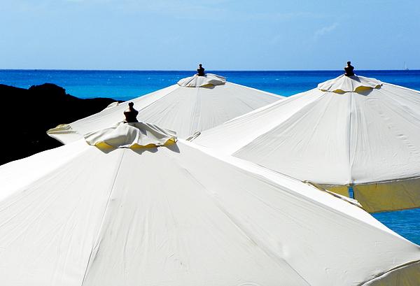 Landscapes Photograph - White Umbrellas by Karen Wiles