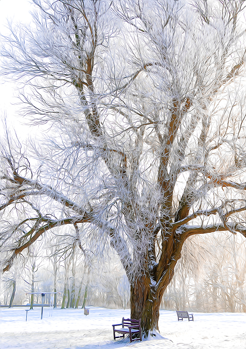Artistic Digital Art - White Winter Tree by Svetlana Sewell