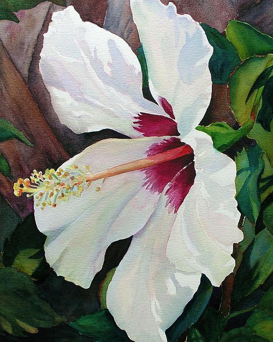 Hibiscus Painting - White Wonder by Judy Mercer