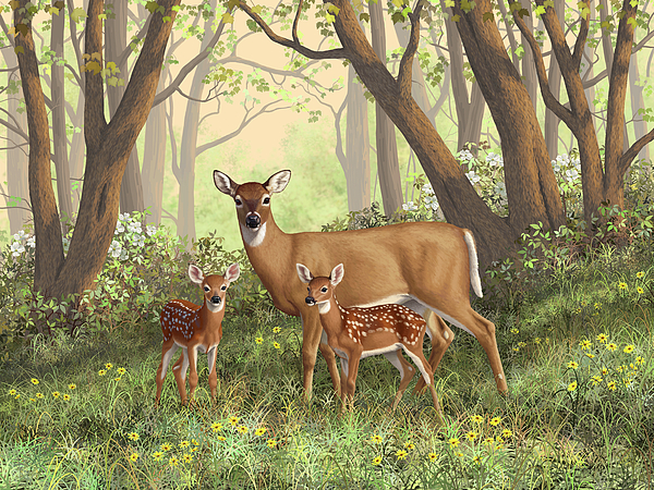 Whitetail Deer Painting - Whitetail Doe And Fawns - Moms Little Spring Blossoms by Crista Forest
