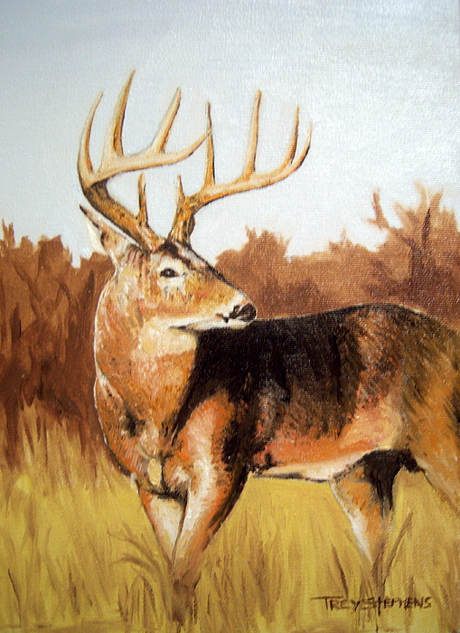 Whitetail Painting - Whitetail by Trey Stephens