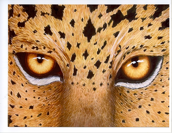 Animal Painting - Wild Eyes by Lorraine Foster