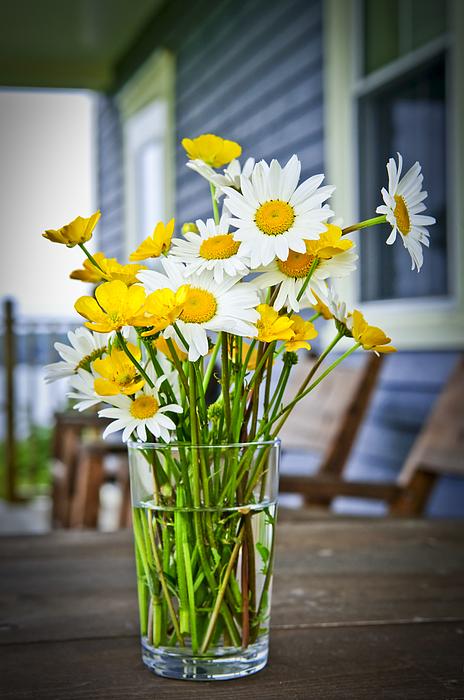 Bouquet Photograph - Wildflowers Bouquet At Cottage by Elena Elisseeva