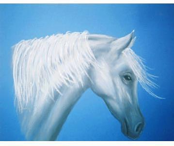 Horse Painting - Wind by Diana Cochran