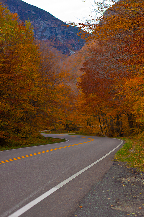 East Coast Photographs Photograph - Winding Road by Robert  Torkomian