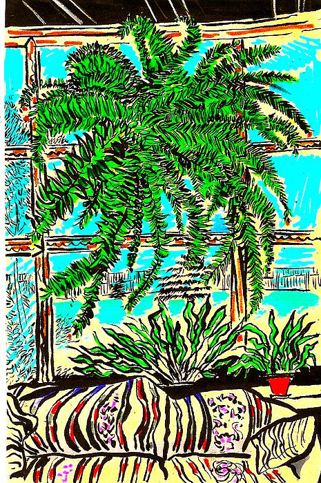 Plant Drawing - Window Loving Fern by Al Goldfarb