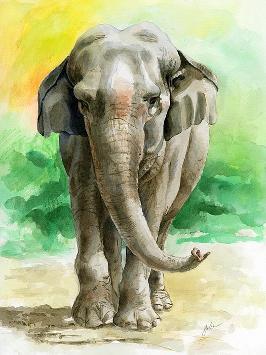 Elephant Painting - Winky by Galen Hazelhofer