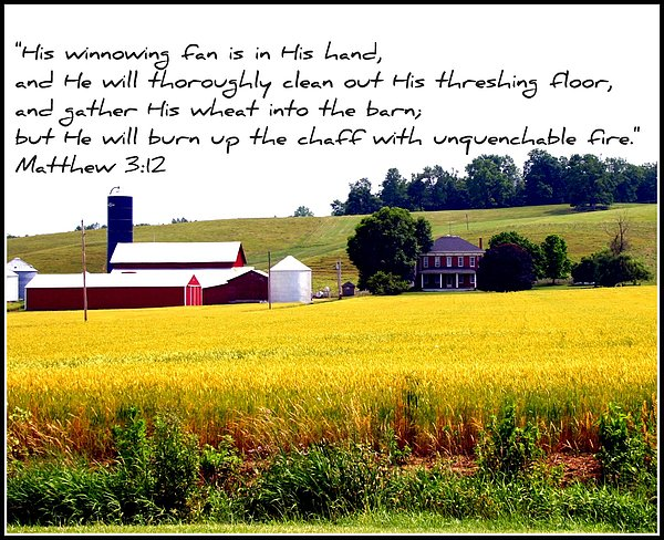 Farm Photograph - Winnowing Fan by Elizabeth Babler