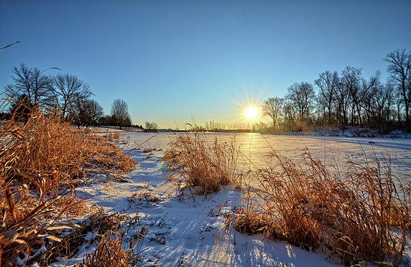 Winter Photograph - Winter At Maynes by Bonfire Photography