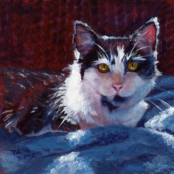 Cat Painting - Winter Comfort by Pat Burns