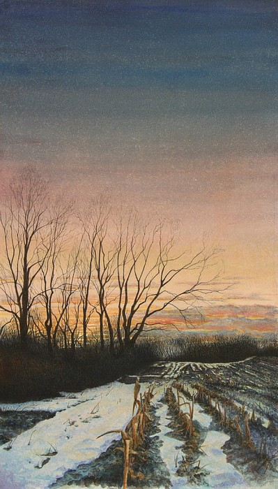 Landscape Painting - Winter Field by Stephen Bluto