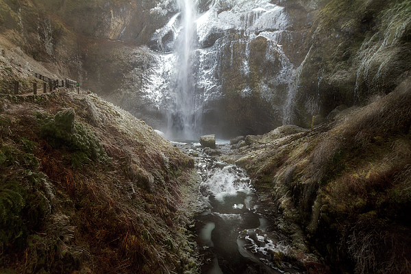 Multnomah Falls Photograph - Winter Freeze At Multnomah Falls by David Gn