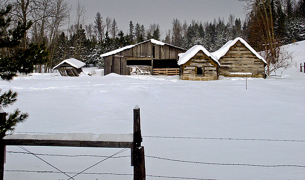 North Idaho Photograph - Winter On The Ranch by Albert Seger