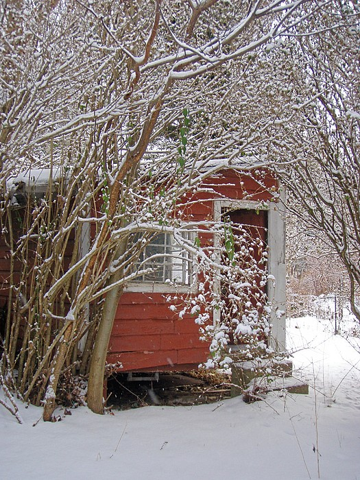 New England Winter Photograph - Winter Reading Room by Kristine Nora