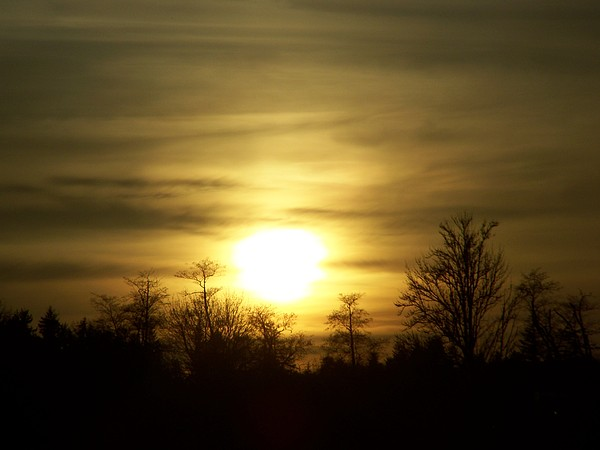 Digital Photography Photograph - Winter Solstice by Laurie Kidd
