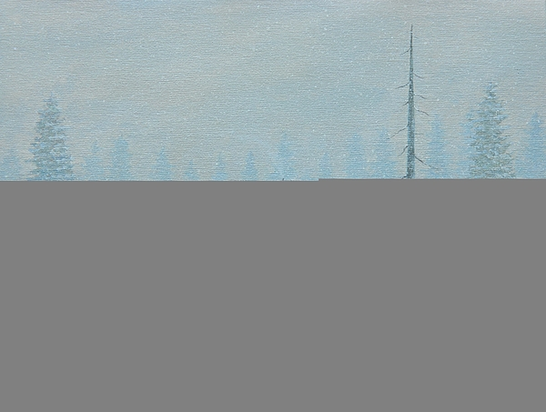 Winter Painting - Winter Storm Carter by John Carter