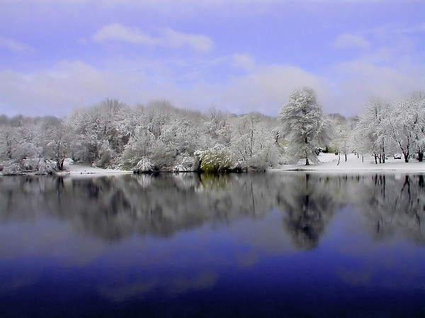 Winter Photograph - Winter View by Karol Livote