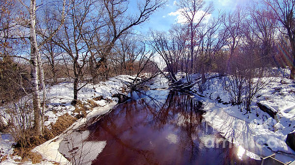 Landscape Photograph - Wintertime In Necedah  by Ricky L Jones