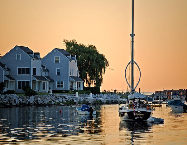 Pelican Photograph - Wishbone Yacht by Michael Thomas