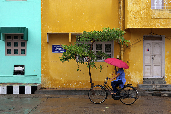 Adult Photograph - Woman Cycling In Street by Claude Renault