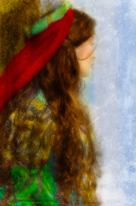 Woman Photograph - Woman In Medieval Gown by Jill Battaglia