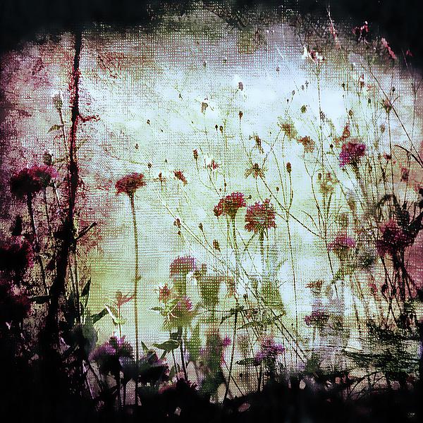 Alice In Wonderland Photograph - Wonderland by Trish Mistric