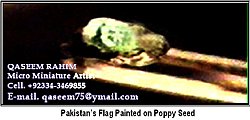 Painting Painting - World Smallist Flag On Poppy Seed by Qaseem Ur- Rahim