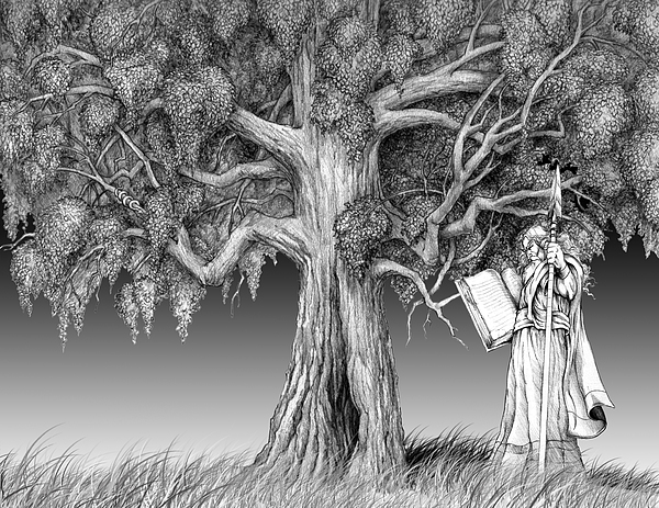 Norse Tree Odin Myth Drawing - Wotan And Yggdrasil by James Carl McKnight
