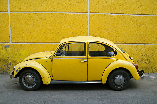 Yellow Photograph - Yellow Bug by Skip Hunt