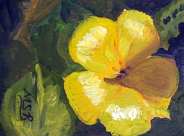 Floral Painting - Yellow Buttercup  by Maria Soto Robbins