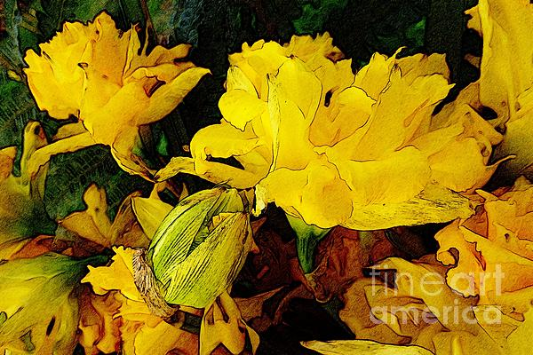 Abstract Digital Art - Yellow Daffodils 6 by Jean Bernard Roussilhe
